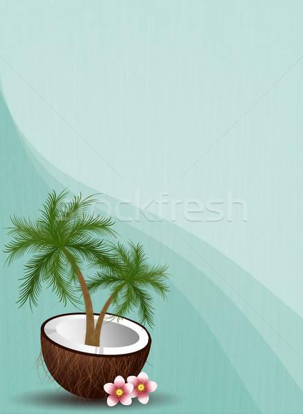 Kokosowe summertime ilustracja plaży lata tropikalnych Zdjęcia stock © sognolucido