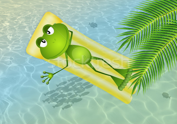 Funny frog on inflatable mattress at sea Stock photo © sognolucido