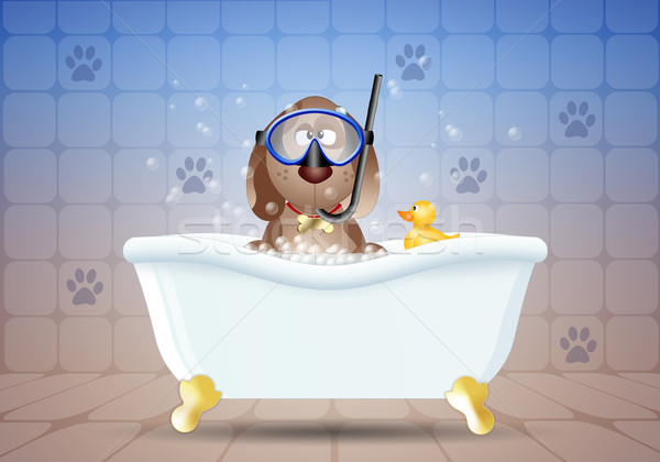 Dog in bath with diving mask Stock photo © sognolucido