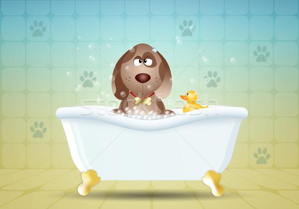 собака ванны ванную собаки животные очистки Сток-фото © sognolucido