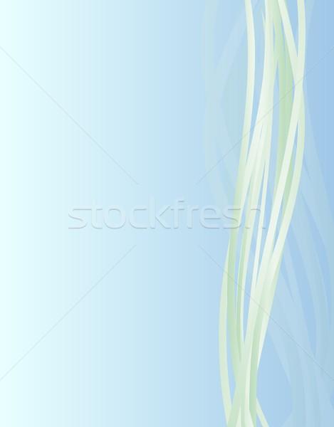 Absztrakt üzlet eps10 eredeti dizájnok textúra Stock fotó © SolanD