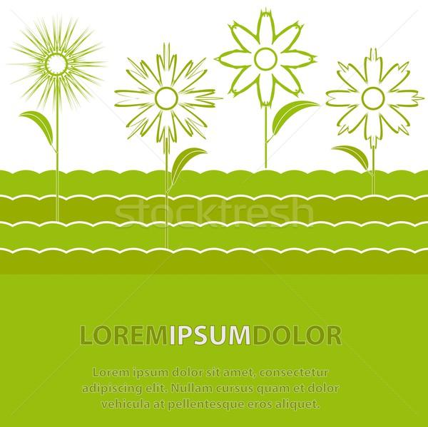 花 輪郭 緑 抽象的な 春 結婚式 ストックフォト © SolanD