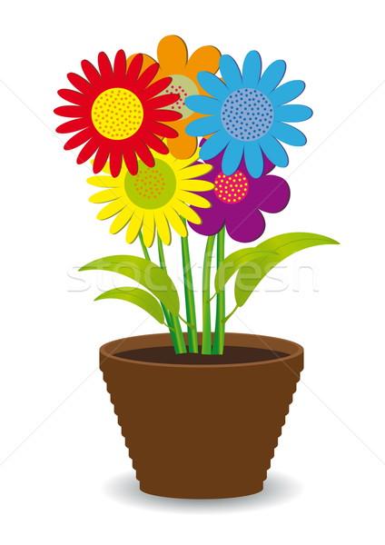 Parlak renkli çiçekler pot bahar çim Stok fotoğraf © SolanD
