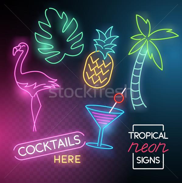 Tropicales neón luz signos establecer Foto stock © solarseven