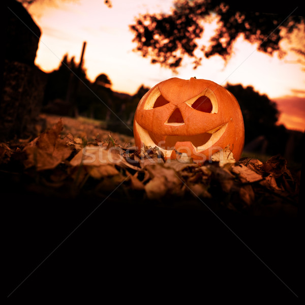 Halloween Background Stock photo © solarseven