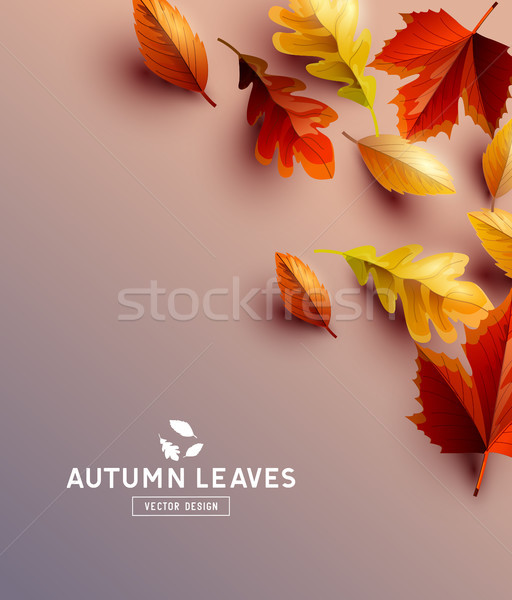 Vector Background With Autumn Leaves Stock photo © solarseven
