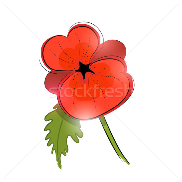 Red Poppy Vector Stock photo © solarseven