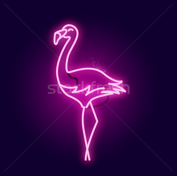 Rose néon Flamingo signe tube Photo stock © solarseven