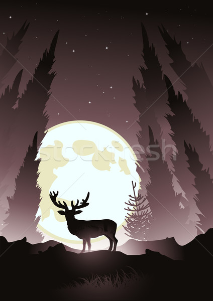 Stag by Moonlight Stock photo © solarseven