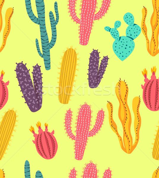 Sem costura colorido cacto plantas padrão suculento Foto stock © solarseven
