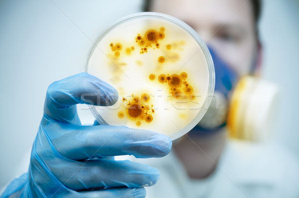 Infection And Disease Control Stock photo © solarseven
