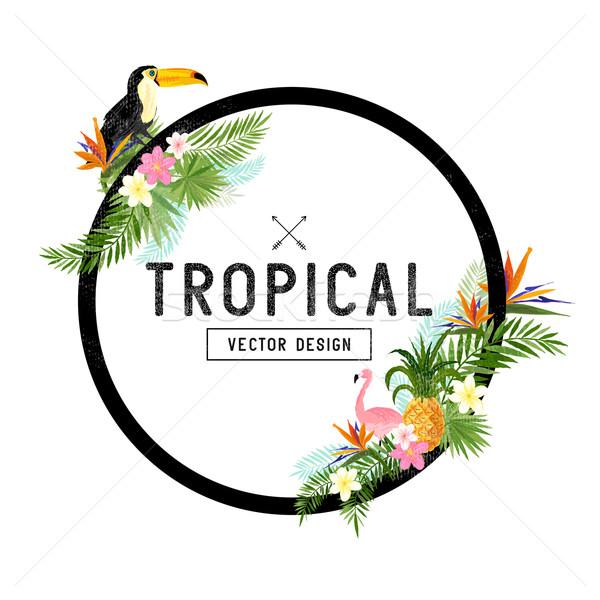 Tropicali confine design elementi uccello Foto d'archivio © solarseven