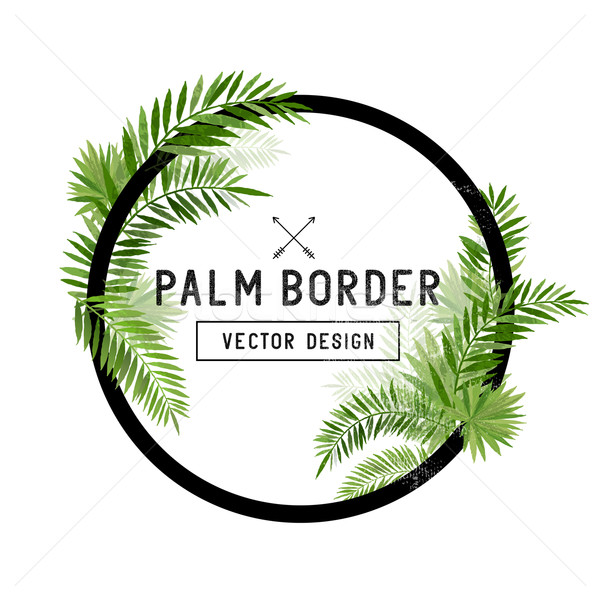 Tropical Palm Leaf Border Vector Stock photo © solarseven