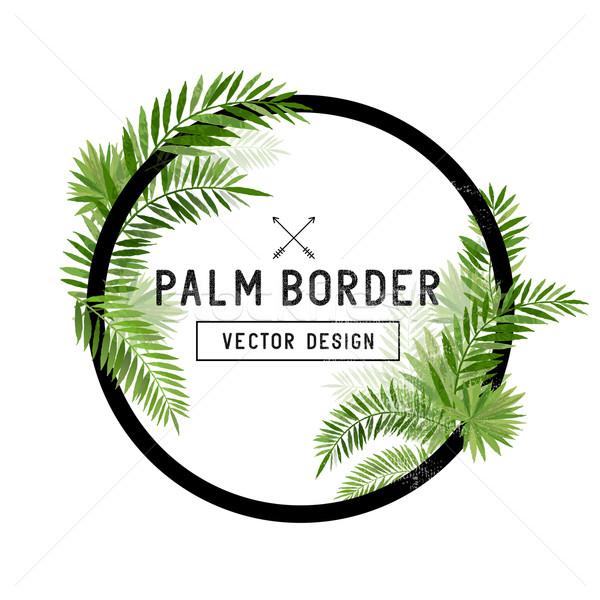 Tropicales hoja de palma frontera vector verano palmera Foto stock © solarseven