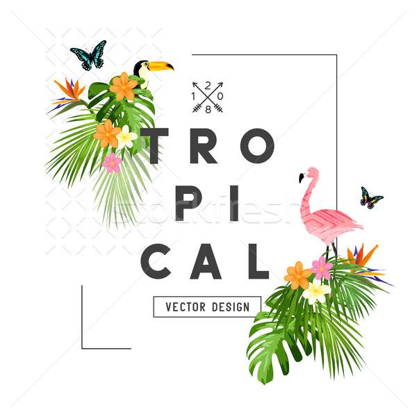 Tropical Jungle Frame Stock photo © solarseven