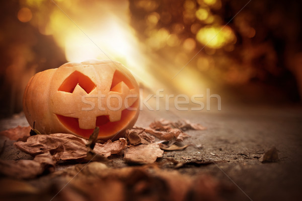 Cheerful Pumpkin On A Autumn Halloween Evening Stock photo © solarseven
