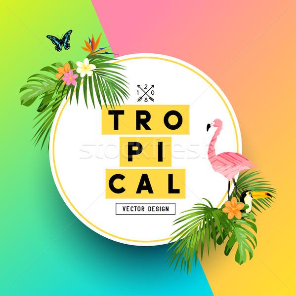 Tropicali estate giungla luminoso colorato design Foto d'archivio © solarseven