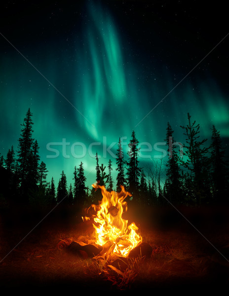 Campfire In The Wilderness With The Northern Lights Stock photo © solarseven
