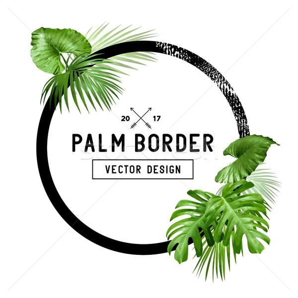 Trópusi pálmalevél keret terv keret díszített Stock fotó © solarseven