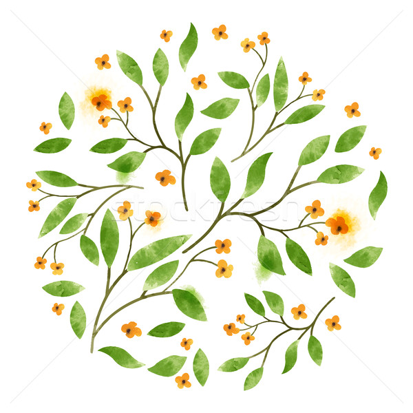 Stock photo: Floral Vector Watercolour