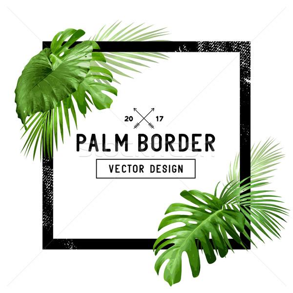 Tropicales frontera diseno marco decorado floral Foto stock © solarseven