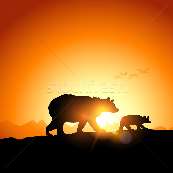Wild Grizzly Bears Stock photo © solarseven