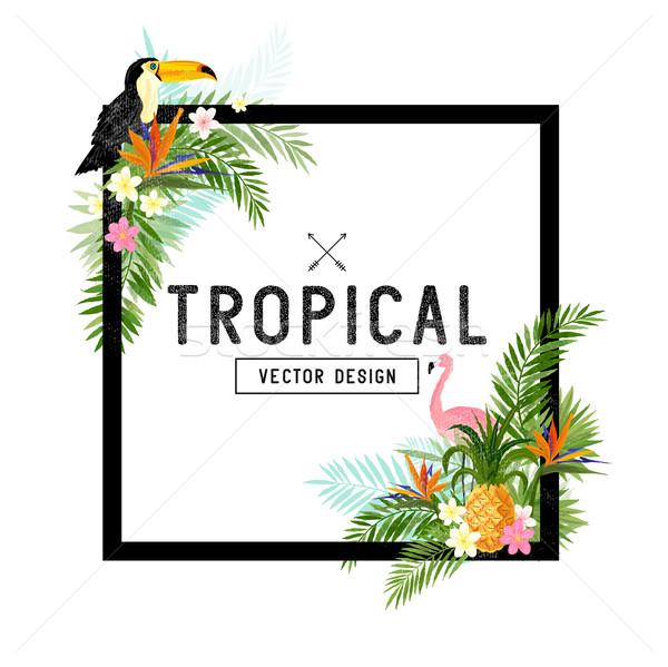 Tropische grens vector ontwerp communie Stockfoto © solarseven