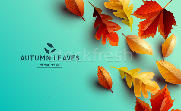 Vector Background With Autumn Golden Leaves Stock photo © solarseven