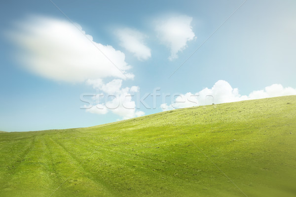 Blue Sky and Green Hills Stock photo © solarseven