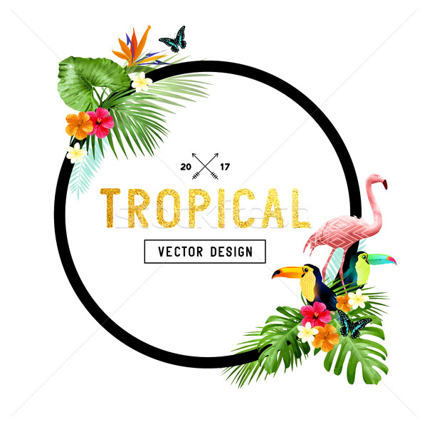 Tropical Border Design Stock photo © solarseven