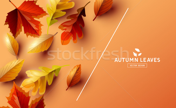 Vector Background With Autumn Falling Leaves Stock photo © solarseven