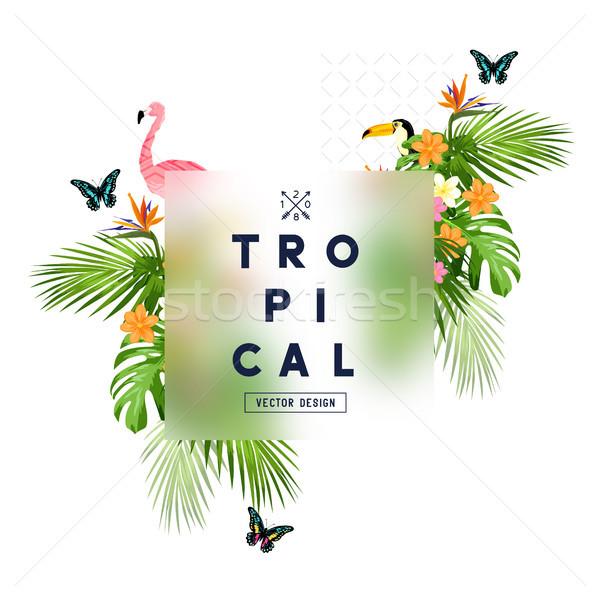 Tropical Rainforest Frame Stock photo © solarseven