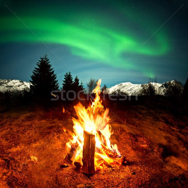 Camp Fire Watching Northern Lights Stock photo © solarseven