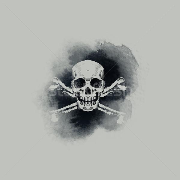 Skull and Crossbones Stock photo © solarseven