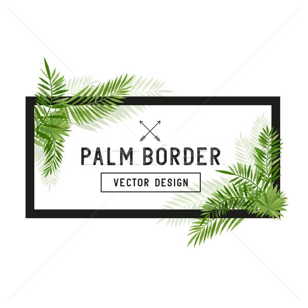 Trópusi pálmalevél keret vektor nyár pálmafa Stock fotó © solarseven