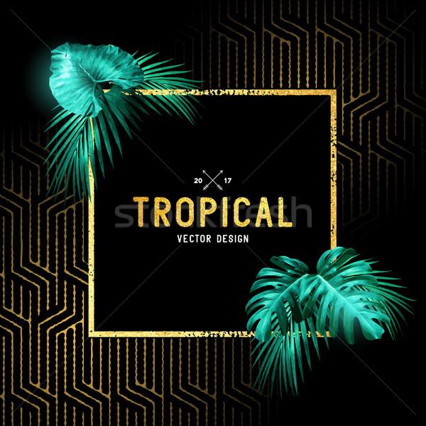 Stockfoto: Vintage · tropische · ontwerp · grens · palmbladeren · goud