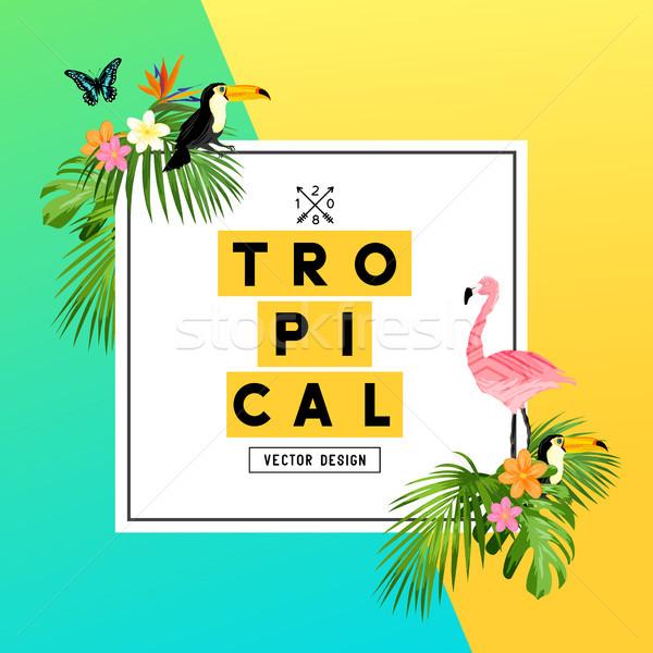 Tropicales verano selva brillante colorido diseno Foto stock © solarseven