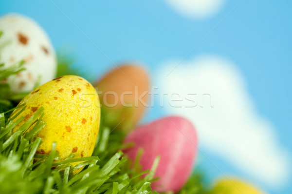 Photo stock: Printemps · œufs · de · Pâques · chocolat · herbe · nature · oeuf