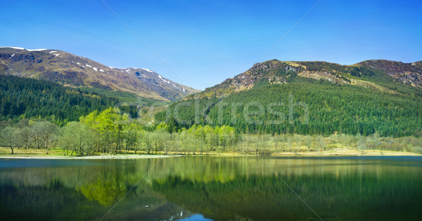 Forest and Mountian Reflections Stock photo © solarseven