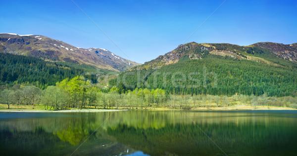 森林 スコットランド 背景 山 美しい ストックフォト © solarseven