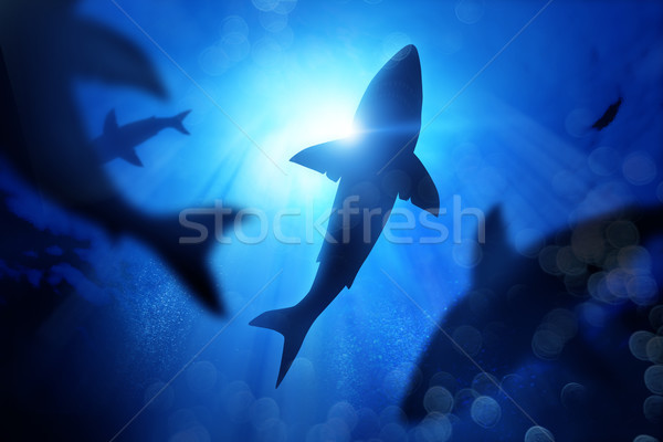 School Of Sharks Under The Waves Stock photo © solarseven