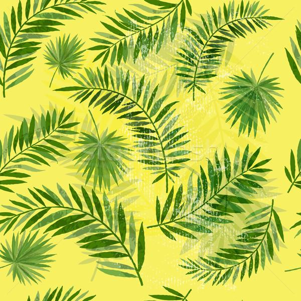 Vintage feuille de palmier modèle tropicales texture Photo stock © solarseven