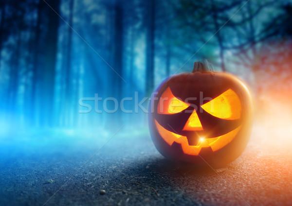 Spooky Halloween Night Stock photo © solarseven