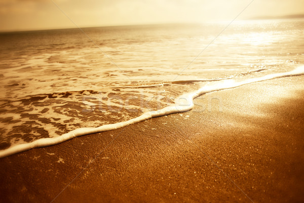 Gouden zee schuim zonsondergang achtergrond Stockfoto © solarseven