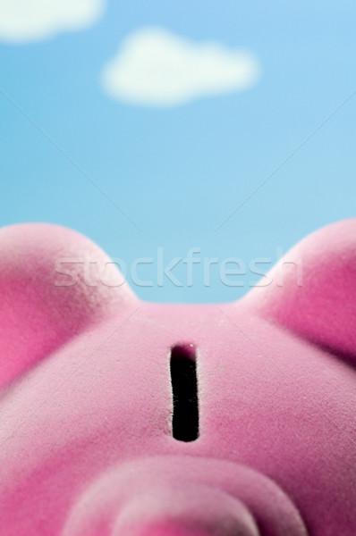 Spaarvarken sleuf besparing munten geld financieren Stockfoto © solarseven
