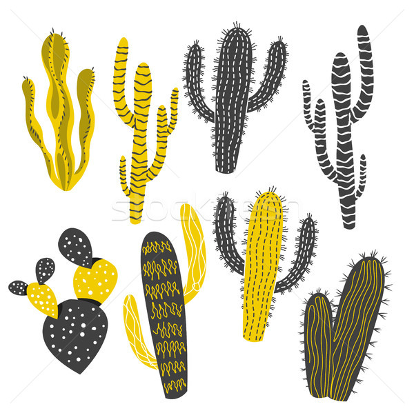Mustard and Charcoal Cactus and Succulent Plants Stock photo © solarseven
