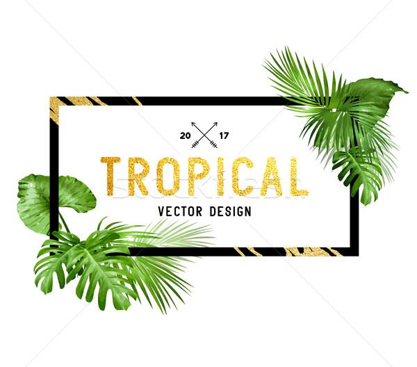 Tropicales frontera diseno negro oro marco Foto stock © solarseven