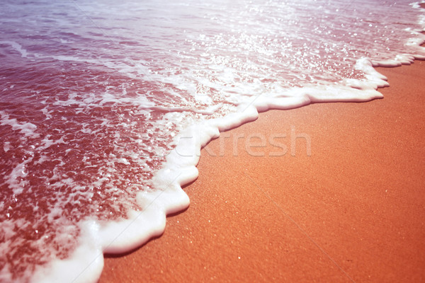 Sea Foam From A Wave Stock photo © solarseven
