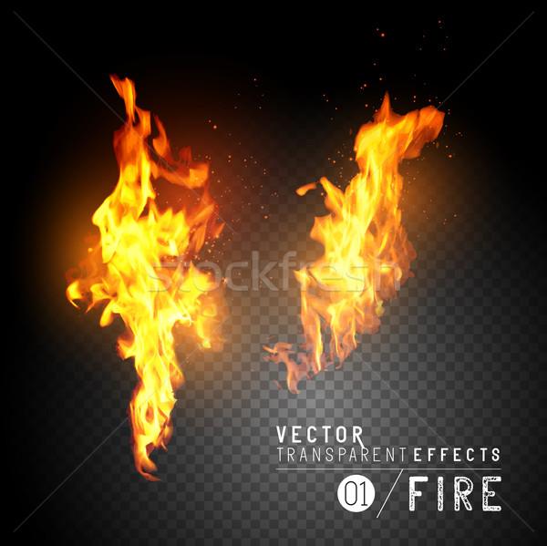 Realistico vettore fuoco fiamme trasparente effetti Foto d'archivio © solarseven