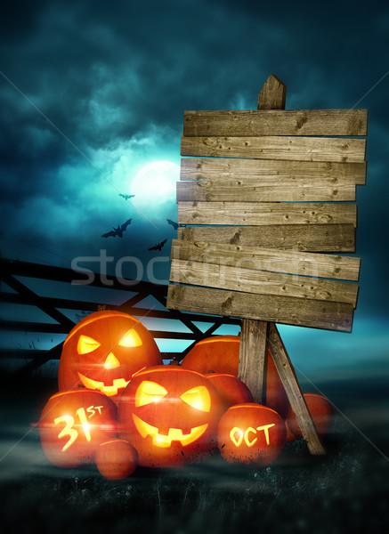 Szczęśliwy halloween odznaczony bajki światła Zdjęcia stock © solarseven